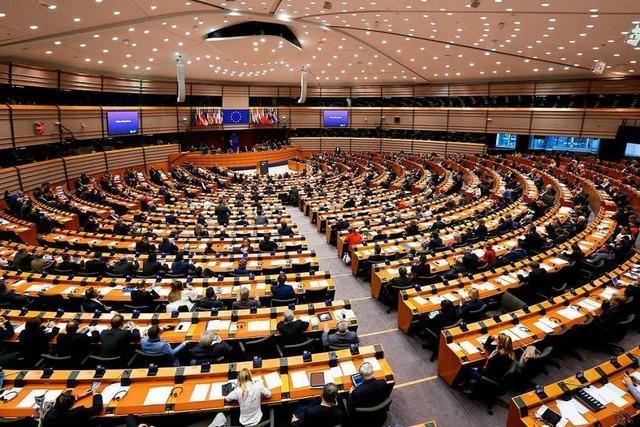 So setzt sich das Europäische Parlament zusammen