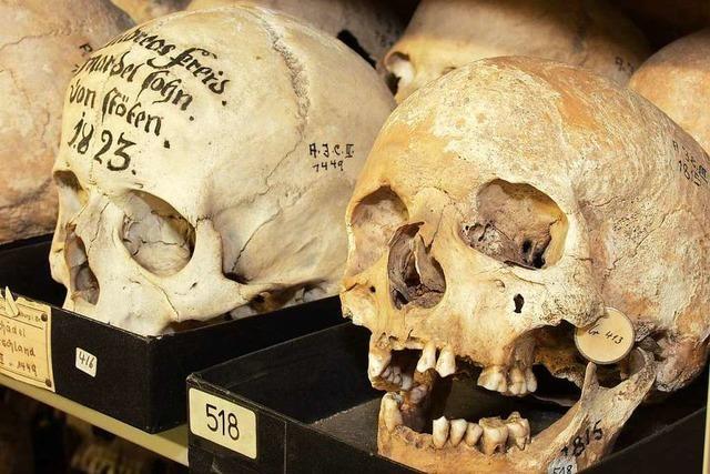 Land will menschliche Schädel an Australien zurückgeben