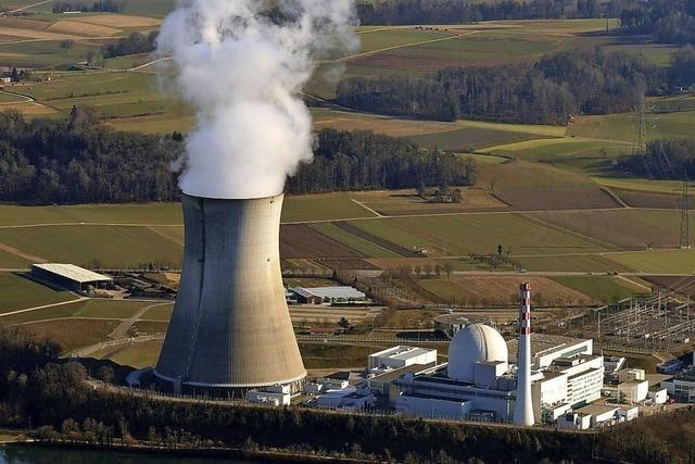 Schweizer Atomkraftwerke stehen unter Kostendruck