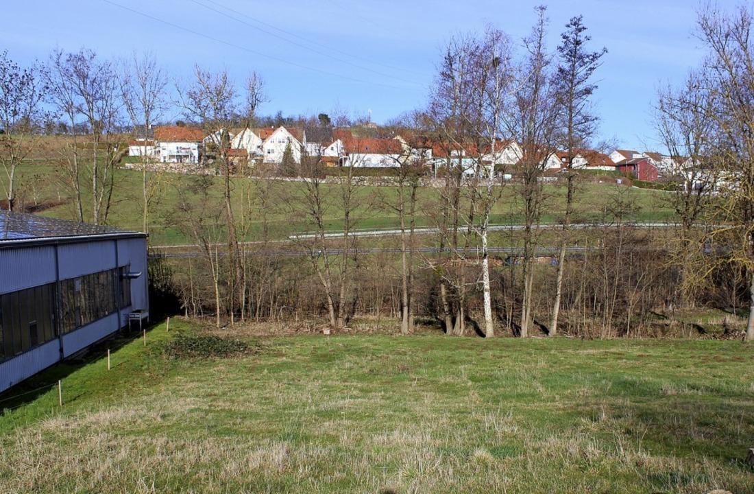 In Nachbarschaft der Halle (links) sol...g aus gleich nach der Brücke (rechts).  | Foto: Langelott