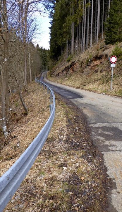 Der Lochenbachweg ist schmal, steil  u...ndgesetzt wird, ist eine Kostenfrage.   | Foto: Peter Stellmach