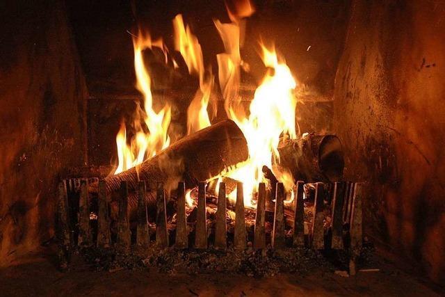 Freiburger Umweltamt erklärt, wie man richtig mit Holz heizt