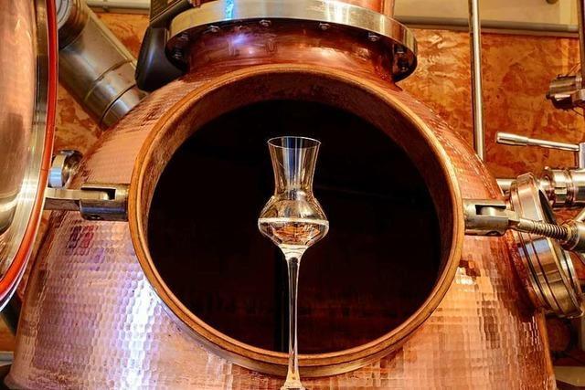 Ob Whisky, Gin oder Rum – südbadische Brenner setzen Trends