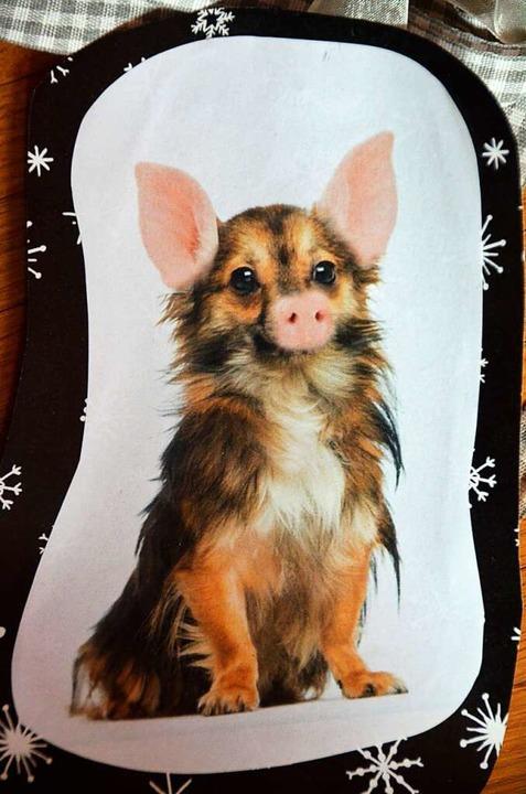 Geschenkt: So sieht also ein Schweinehund aus.  | Foto: Kathrin Blum