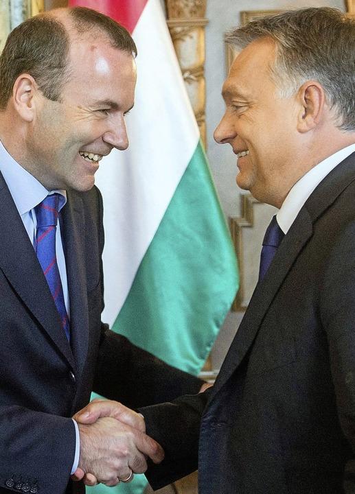 Kennen sich lange: Weber und Orban in Budapest im Jahr 2015.  | Foto: dpa