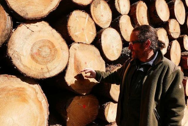 Das Beispiel Bonndorf zeigt, wie der Klimawandel dem Wald zusetzt