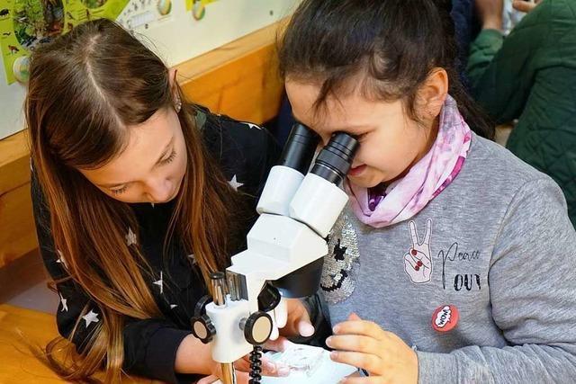 Umkircher Grundschüler erkunden mit dem Ökomobil die Natur