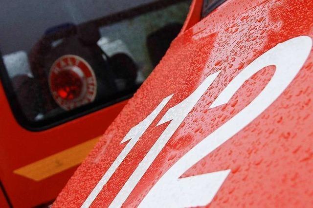 Kreisbrandmeister lobt Freiwillige Feuerwehr Stegen für Jugendarbeit