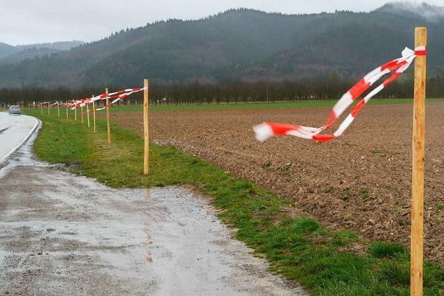 Pfähle mit Flatterbändern sollen Feldlerchen vor Baustelle warnen