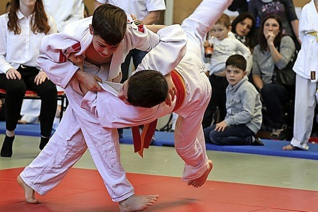 Judoschule ganz meisterlich