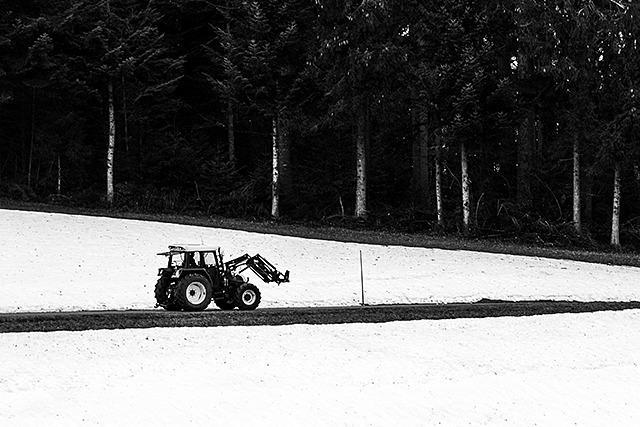 Fotos: Schaurig-schöne Schneereste im Schwarzwald
