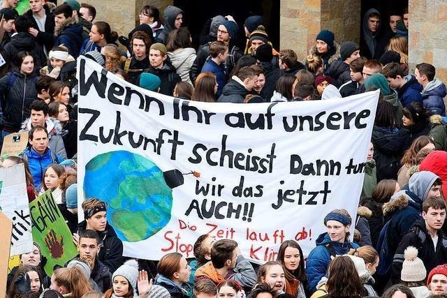Klimastreik in der Region Basel erhält Preis für Naturschutz