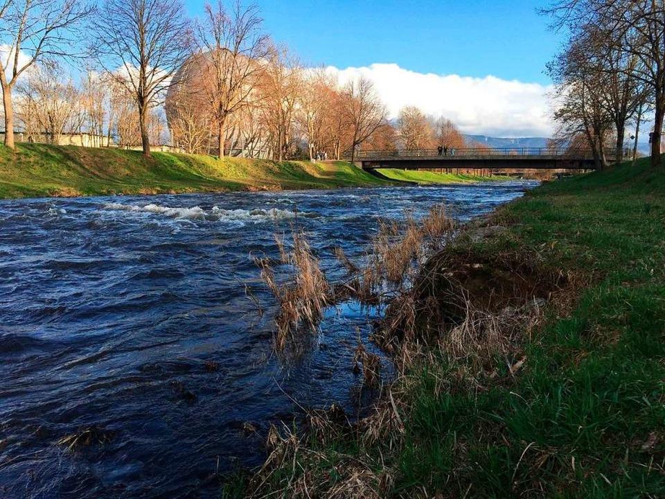 Nach der langen Trockenperiode im verg...un wieder als richtiger Fluss rauscht.  | Foto: Franz Ehret
