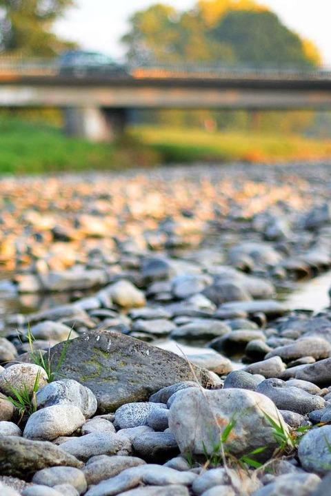 Im Sommer fehlte der Dreisam Wasser.  | Foto: Kathrin Blum