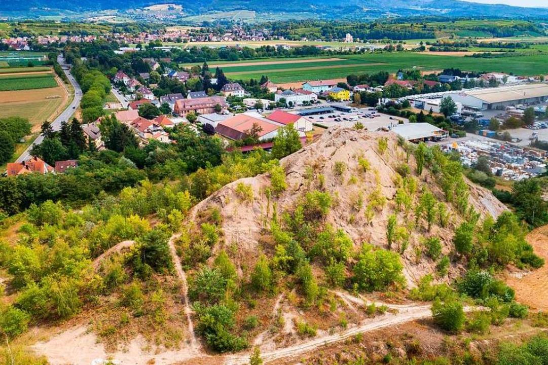 Die 40 Meter hohe Abraumhalde bei Buggingen.  | Foto: Matthias Weniger