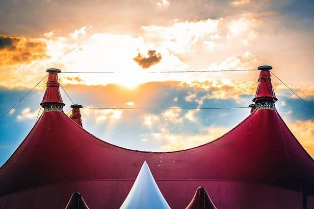 Das Zelt-Musik-Festival soll wachsen – um wettbewerbsfähig zu bleiben