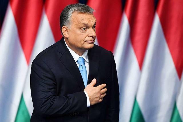 Kreise: Union für EVP-Suspendierung von Orbans Fidesz
