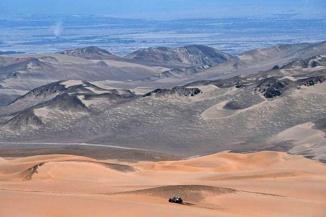 Fünfjähriger geht in Wüste verloren – wo Pumas leben