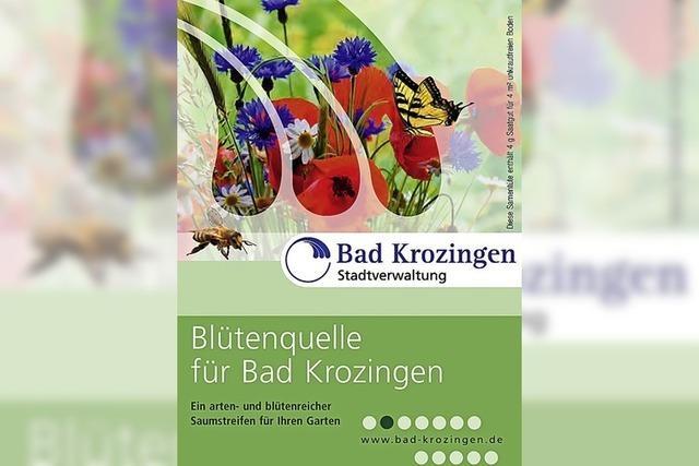 Bad Krozingen gewinnt bei