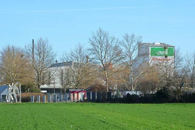 Firma Birkenmeier will in Niederrimsingen erweitern