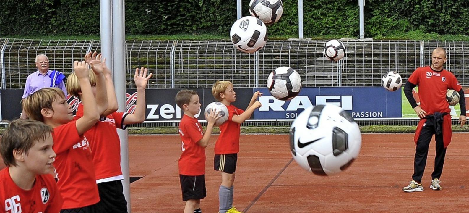 Sportverein Freiburg
