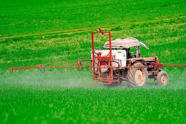 Pestizideinsatz vergiftet das Koalitionsklima
