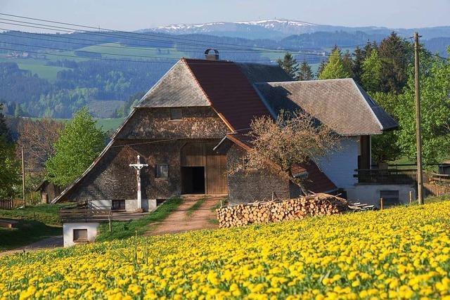 Wie im Schwarzwald moderne Architektur gefördert werden soll