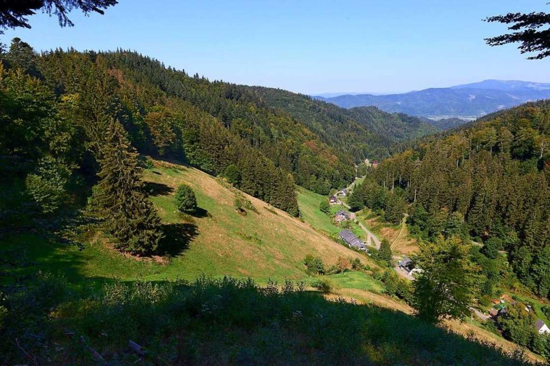 Das Kappler-Tal mit dem Ortsteil Schau...ort für die Windräder, der Taubenkopf.  | Foto: Ingo Schneider
