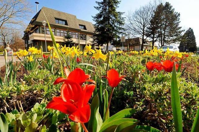So bunt ist der Frühlingsanfang in Ehrenkirchen und Umgebung