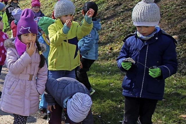 Mehr als 1500 Bad Säckinger sammeln Müll