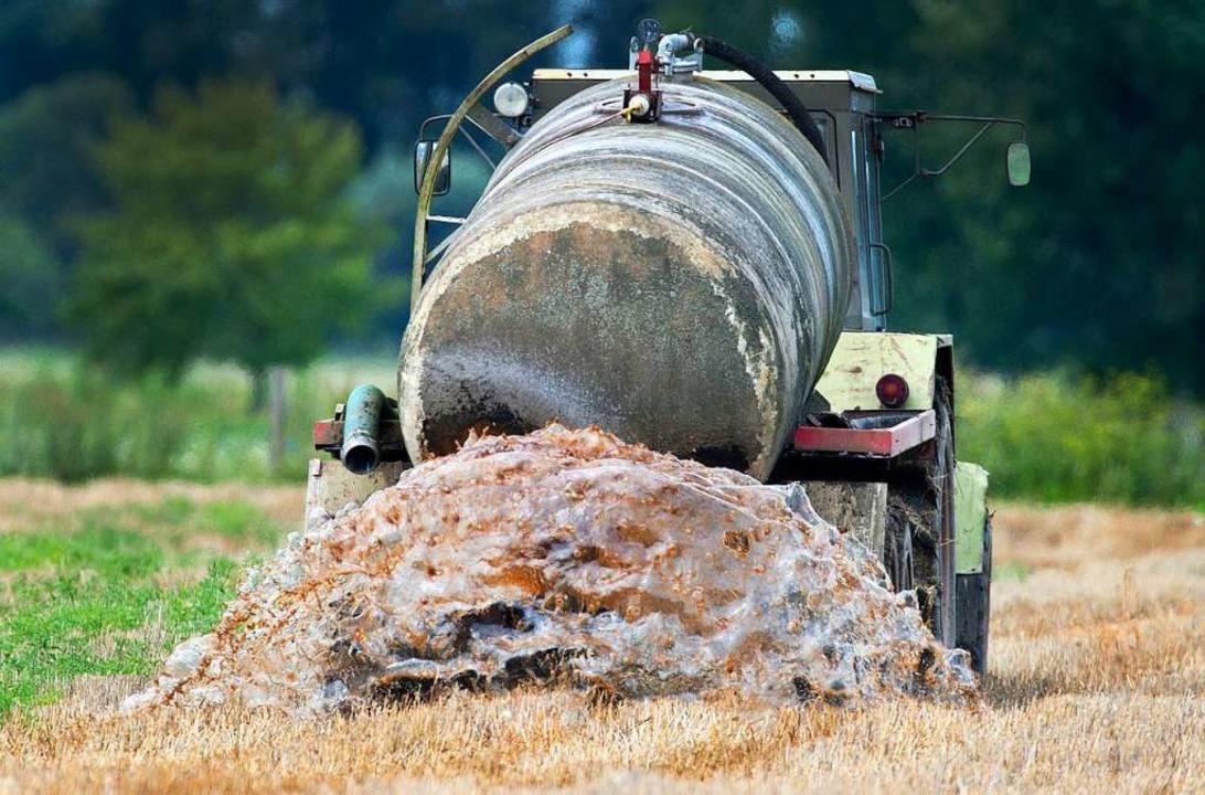 Gülle auf dem Feld – Hauptquelle für Nitrat im Trinkwasser  | Foto: dpa