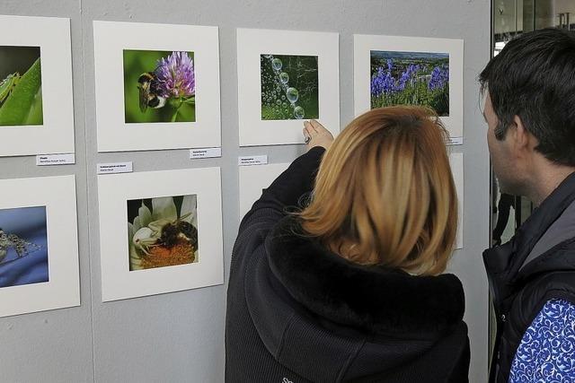Artenvielfalt, Lebensräume