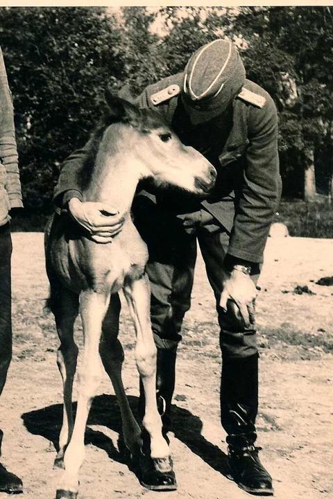 Tierarzt Cordes hält  das Fohlen im Ar... 1936 für seine Skulptur Modell stand.    Foto: Privat