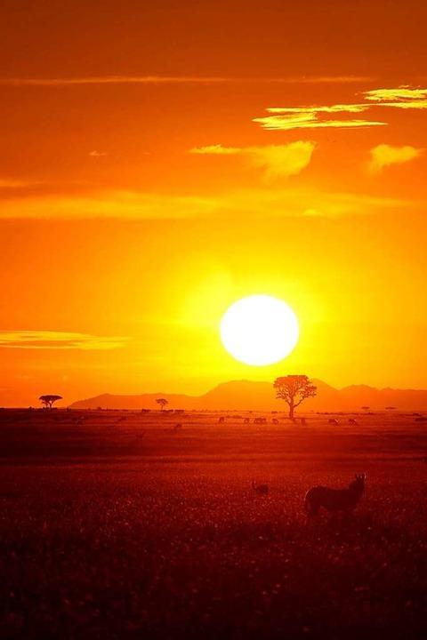 Sonnenuntergang in der Serengeti  | Foto: dpa