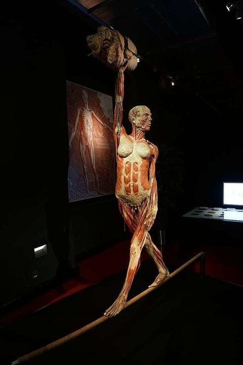 Eine Seiltänzerin präsentiert ihre inneren Organe.  | Foto: Manuel Fritsch