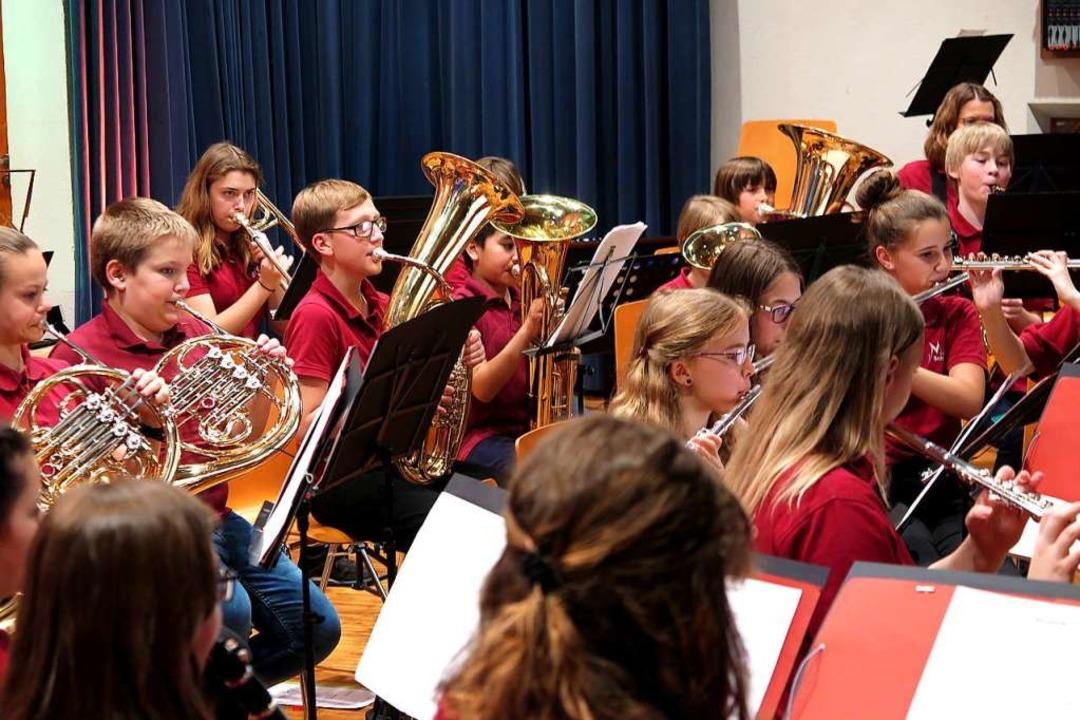 Das Jugendorchester des Musikvereins S...glänzte mit neu erarbeiteten Stücken.   | Foto: Dorothee Philipp