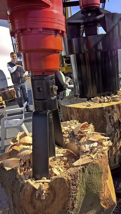 Alle Facetten der Holzbearbeitung sind...en Fachmessen ergänzen sich prächtig.   | Foto: Winfried Köninger