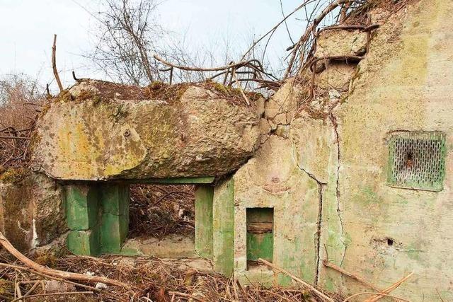 Wieso sich der Umgang mit den Ruinen des Westwalls in Neuenburg schwierig gestaltet