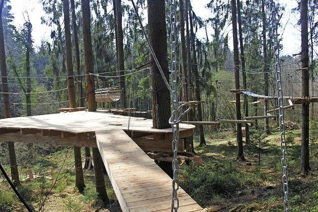 Der Kletterwald wächst heran