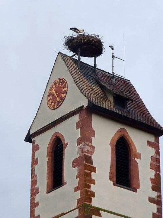 Die Gundelfinger Störche sind auch in ...er evangelischen Kirche zurückgekehrt.  | Foto: Dieter Engelbrecht
