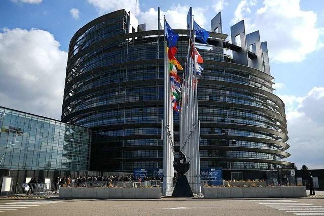 Wie Nationalisten im Europaparlament auftrumpfen