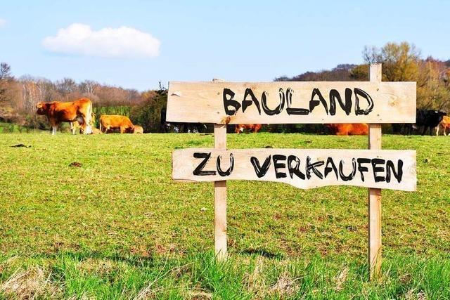 Der Efringen-Kirchener Gemeinderat entscheidet über die umstrittene Bauplatzvergabe