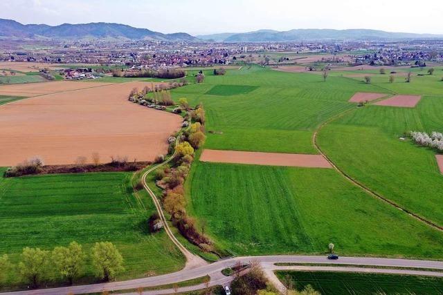 Kreis und Stadt begründen ihren Standortfavoriten für Großklinik in Offenburg