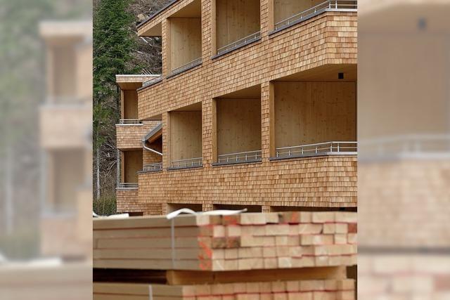 Bauen mit Holz ist en vogue