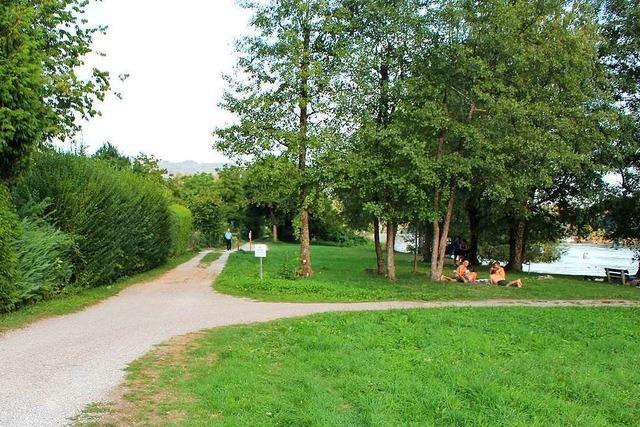 Der Rheinuferweg in Schwörstadt soll attraktiver werden