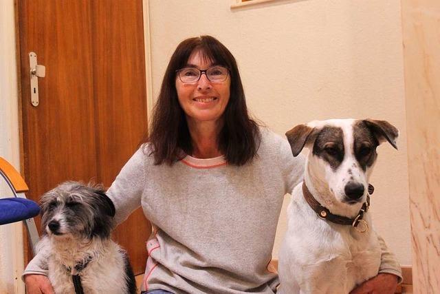 Herrischriederin Barbara Böttcher hat ein Herz für Hunde aus Rumänien