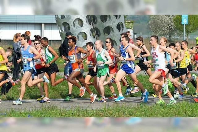 Beim Freiburg-Marathon werden Zehntausende Zuschauer erwartet