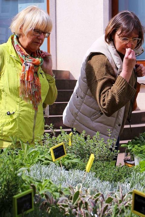 An den Ständen der Gärtnereien gab es ...rn auch feine Zutaten rund ums Kochen.  | Foto: Ruth Seitz