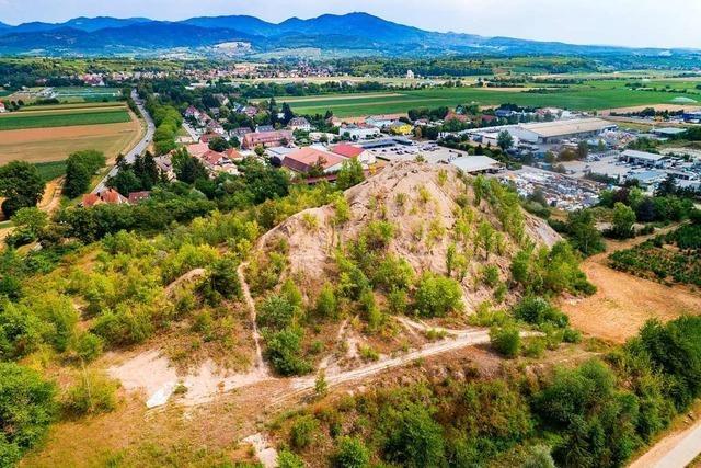 Aus der Kali-Altlast in Buggingen wurden pro Jahr bis zu 945 Tonnen Salz ins Grundwasser gespült