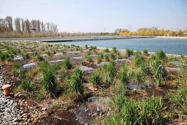 Der Naturschutzbund will keine Eventarena im Lahrer Seepark